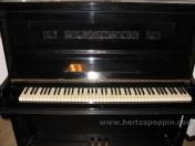 Pianoforte Bluhmann3