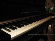 Pianoforte Bluhmann5