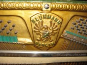 Pianoforte Bluhmann6