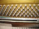 Pianoforte Bluhmann9