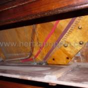 Accordatore roma pianoforte Brizzi e Niccolai4