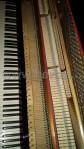 Pianoforte Reismann00004
