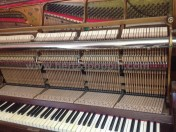 PianoforteCHEMNITZER PIANOHAUS BRADER & MUNCH00004